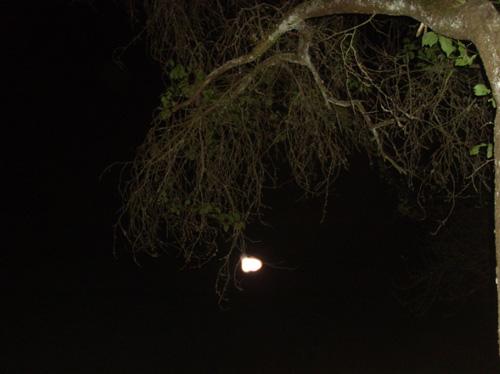 Lichtnachricht