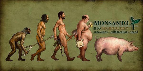 monsanto-evolution