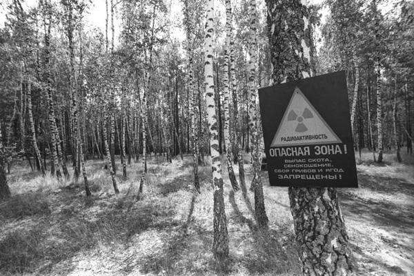 russland-tschernobyl-endlager