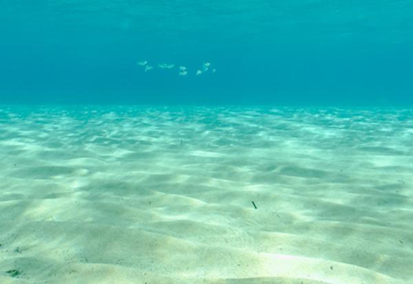 meeresgrund-schelfeis-suesswasser