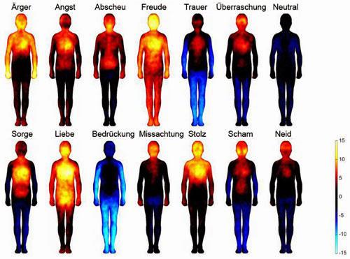 emotionen-wahrnehmung