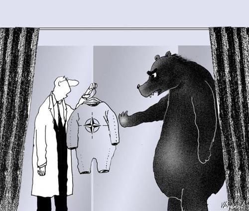 nato-russland-ukraine-konflikt