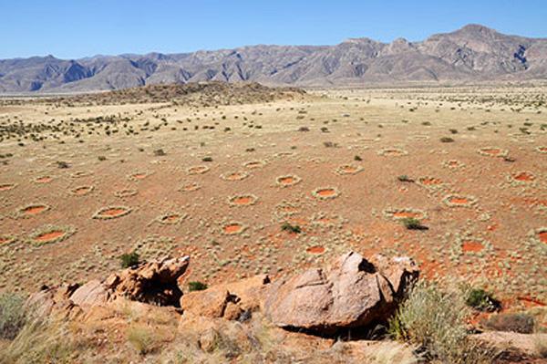 feenkreise-namibia