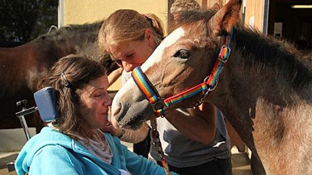 heilende-sprache-pferde
