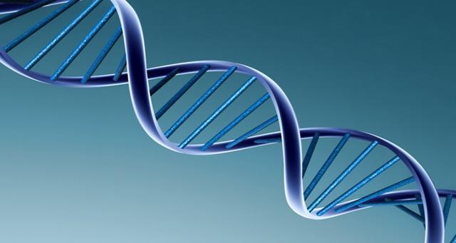 genetische-kinder