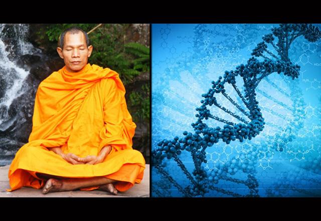 meditation-erbgut-neu