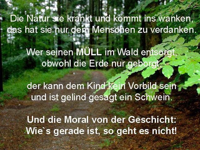 wald-muell