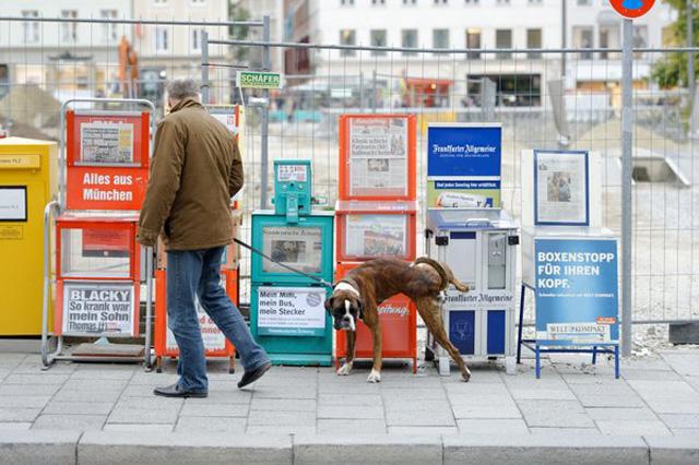 deutsche-medien-untergang
