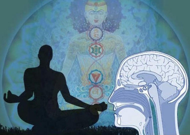 meditation-gesundheit-gehirn