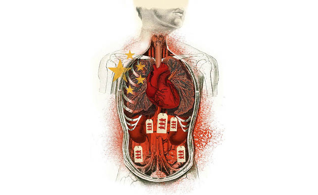 organhandel-china