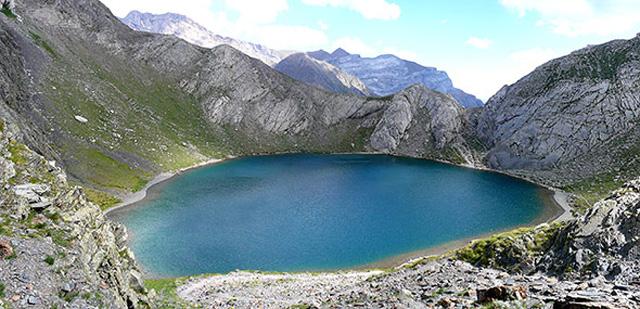 bergsee-fische
