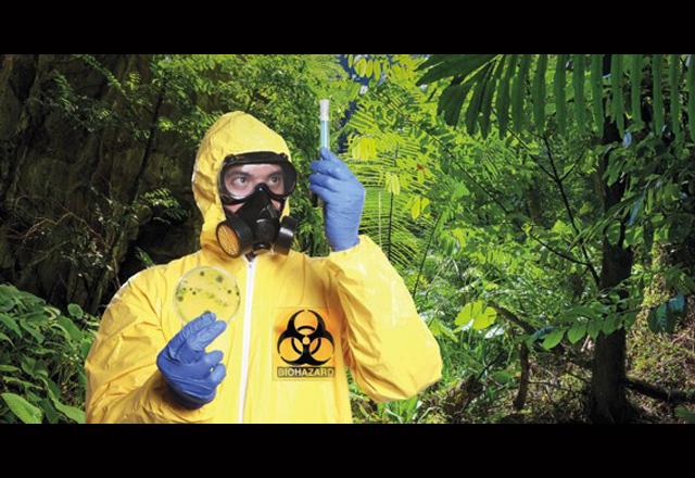 ebola-waffe1