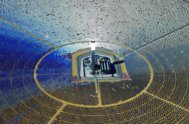 solaranlage-tiere-tot