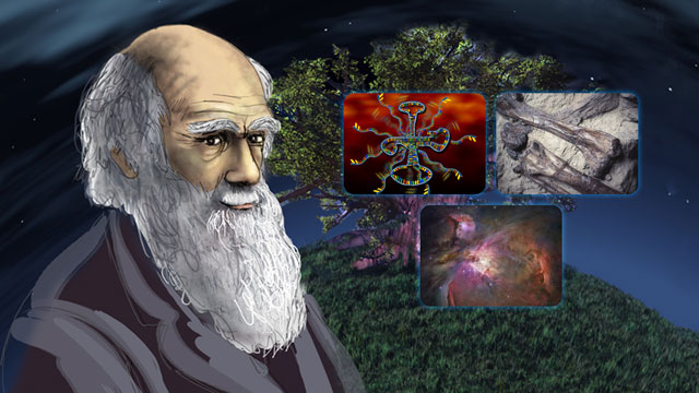 titel-evolution