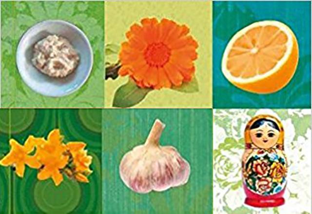 Kohl – Gemüse mit Heilkraft