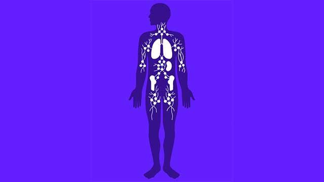 Gesundheit: So funktioniert das Immunsystem